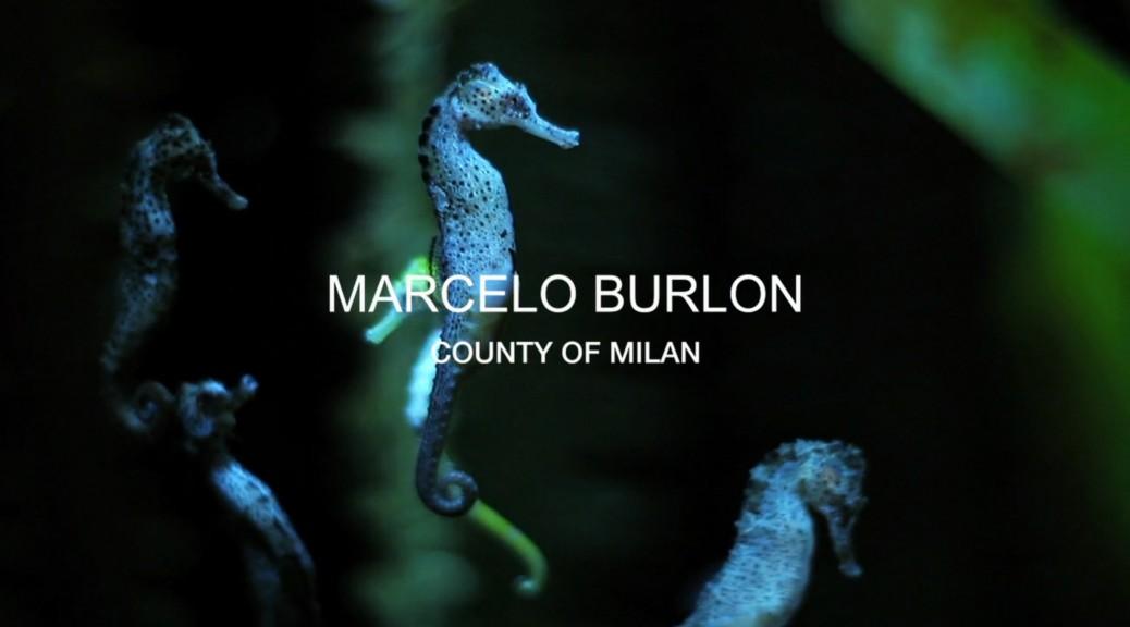marclelo-burlon